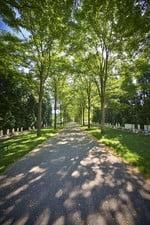 week van de begraafplaats